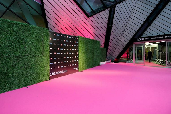 Hot pink event carpet in front of a step and repeat a museum